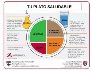 Plato_saludable_HARVARD